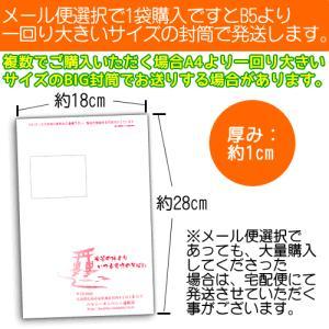 白いんげん豆パウダー500g(北海道産 焙煎済み ファセオラミン) メール便 送料無料|healthy-c|02