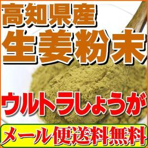 生姜粉末しょうがパウダー100g(高知県産ウルトラ生姜)殺菌...