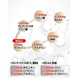 【送料無料】アリスト スーパーメダリスト9000(500ml用×8袋)【BCAA+HMB+クエン酸】|healthy-c|02