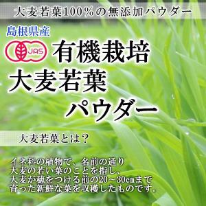 青汁 大麦若葉 パウダー100g オーガニック 有機栽培 島根産 国産 粉末 メール便 送料無料|healthy-c|04