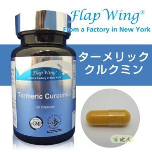 フラップウィング(FLAP WING) ターメリック クルクミン 0.61g×30粒  - 日本ダグラスラボラトリーズ healthy-good