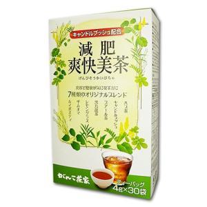減肥爽快美茶 4g×30包  - がんこ茶屋|healthy-good