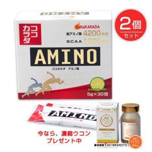 ココカラダ アミノ酸 4200mg 5g×30包×2個セット ※今なら濃縮ウコン90カプセル プレゼント  - コーワリミテッド|healthy-good