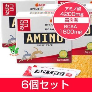 ココカラダ アミノ酸 4200mg 5g×30包×6個セット ※プレゼント付  - コーワリミテッド|healthy-good
