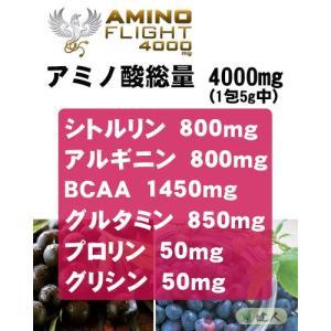 アミノフライト4000mg (AMINO FL...の詳細画像2