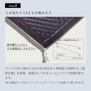 クリーンテックス ウォーターホースT(ダイヤモンド) 88×114 ライト・グレー|healthy-living|03