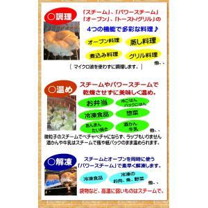 フォーマック パワースチームオーブン ニューグランシェフ(送料無料)蒸し籠プレゼント メーカー直送(店で展示してます)消費者還元事業対応(5%バック) healthyikeda 03