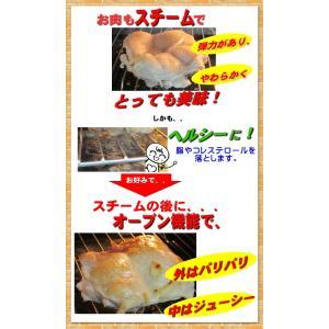 フォーマック パワースチームオーブン ニューグランシェフ(送料無料)蒸し籠プレゼント メーカー直送(店で展示してます)消費者還元事業対応(5%バック) healthyikeda 05