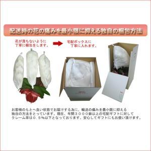 洋蘭の鉄人が育てた豪華胡蝶蘭3本立ち 30輪前後 つぼみ含む  赤リップ ポイント10倍 送料無料 heart-flower 06