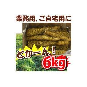 大和芋 6kg 業務用 訳あり 島田ファーム産 群馬 群馬県産 とろろ ヤマトイモ ヤマト芋 やまと芋 やまといも 山芋 長芋 自然薯 ギフト 通販 販売 おすすめ 人気|heartdrop
