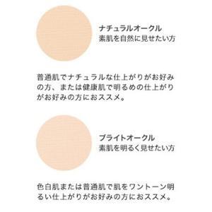 【限定クーポン】スタインズ ステージパウダー 単品|heartdrop|02