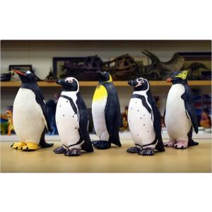 直送品 代引き不可 ペンギン ビニールモデル5体セット 70679-72308-72309-72311-72312 フィギュア