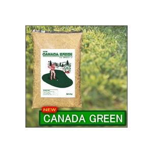 ニューカナダグリーン NEWカナダグリーン 芝生 芝 苗 ガーデニング 芝生の種 ブレンド 庭 ガーデニング用芝|heartdrop