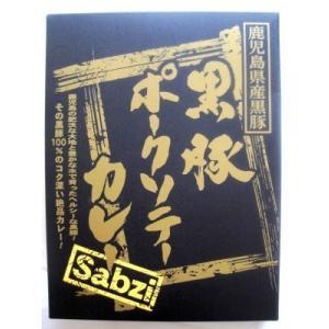 レトルト カレー カレー専門店 sabzi(サブジ) 黒豚ポークソテー カレー 180g×1食 (メール便発送) ポイント消化|heartfelt