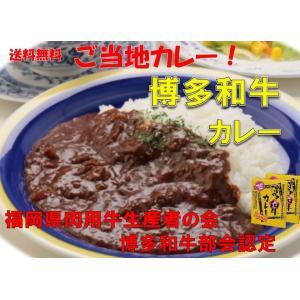 レトルトカレー カレー専門店 Sabzi(サブジ) 博多和牛カレー:180g×2食 (メール便発送) ポイント消化 セール|heartfelt