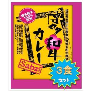 レトルト カレー カレー専門店 Sabzi(サブジ)   博多和牛 カレー:180g×3食 ポイント消化|heartfelt