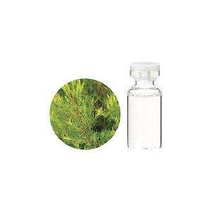 生活の木 アロマ エッセンシャルオイル ティートゥリー 10mL 精油 アロマ|heartland2006