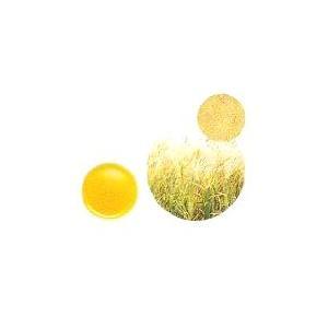 【GET!生活の木 小麦胚芽オイル(ウィートジャームオイル) 25mL】アロマテラピー|heartland2006