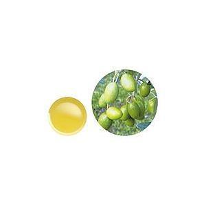 【GET!生活の木 オリーブスクワラン 25mL】アロマテラピー|heartland2006
