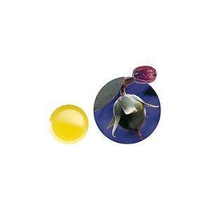 生活の木 ホホバオイル バージン(ゴールデン)未精製 250mL アロマテラピー|heartland2006
