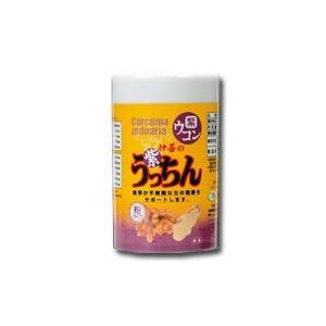 【GET!沖縄仲善 紫うっちん粉 100g】紫ウコン・ガジュツ|heartland2006
