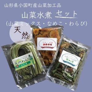山菜水煮セット (山菜ミックス・なめこ・わらび) 山形県小国町産 山菜加工品 送料無料|heartlandfarm