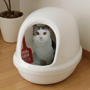 アイリスオーヤマ ネコのトイレ フルカバー しろ P-NE-500-F|heartmark-shop