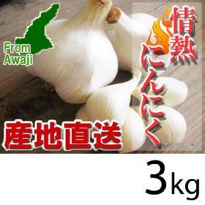 ジャンボにんにく 淡路島産 情熱にんにく 3kg|hearty-e
