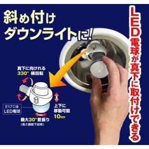 LED 電球用 可変式ソケット DS17-10 ライテックス|hearty-e