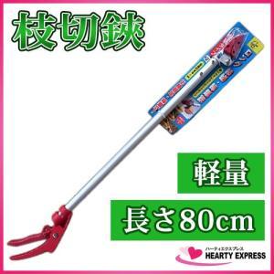 ロング枝切り・採集鋏 80cm 軽量タイプ TS-80|hearty-e