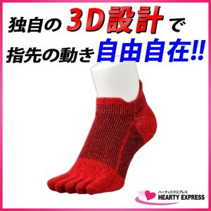 靴下 3Dソックス 5足組 赤 レッド AS-03 スポーツ マラソン ランニング ゴルフ サイクリング 現場作業に最適! 男女兼用 フリーサイズ|hearty-e