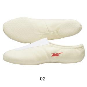 体操シューズ 体操EX asics アシックス TGY501