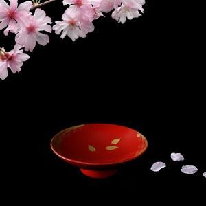 【宮内庁御用達 漆器 山田平安堂】桜盃 刷毛目(木箱入)|heiando