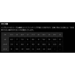 Inov8/イノヴェイト RACE ULTRA 270 MS/レースウルトラ 270 メンズ 【日本正規品】【20%OFF】|heimat-berg|03