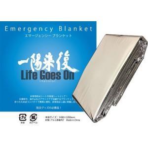 DVD「一陽来復 Life Goes On」|heisei|11