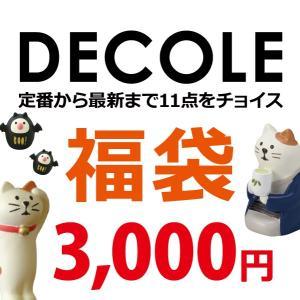 福袋 デコレ 3000円コース