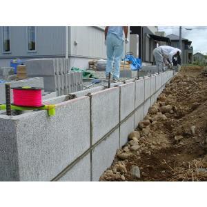 たくみ ブロック水糸 ガイド100付 NO.4421