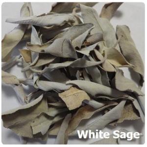 ホワイトセージ リーフ(浄化用アイテム) 量売100g〜 White Sage|herbalkstore