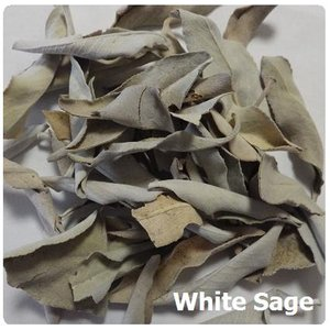 ホワイトセージミニパック リーフ(浄化用アイテム) 2g White Sage【メール便可】 herbalkstore