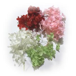 アナベル あじさい4色セット/赤・白・ピンク・緑。  -----------------------...