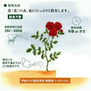 天然植物性有機肥料 ジックニームケーキ 1kg袋|herbnomegumi|02
