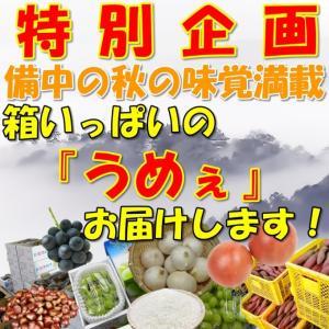 特産品セット 収穫の秋 トマト サツマイモ ぶどうなどなど 備中の秋の味覚満|hey-com-bicchu