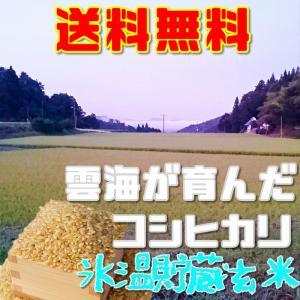 コシヒカリ 氷温熟成 玄米お試し5合約750グラム 送料無料 令和2年産雲海が育んだ備中産|hey-com-bicchu