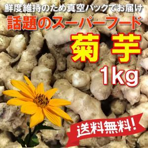 菊芋 送料無料 レシピあり 土つき脱気パック 1kg キクイモ 農薬化学肥料不使用 国産岡山備中産 得トクセール|hey-com-bicchu