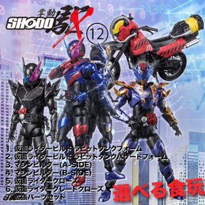 SHODO-X 仮面ライダー12 選べる食玩・ガム (仮面ライダーシリーズ) hfs05