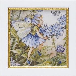 フラワーフェアリーズ ミニゲル アートフレーム 「チコリ」  妖精 ボタニカル イギリス 雑貨 |hgpkaruizawa