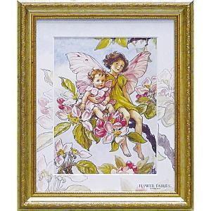 フラワーフェアリーズ アートフレーム 「アップルブロッサム」  妖精 ボタニカル イギリス 雑貨 |hgpkaruizawa