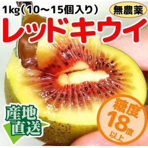 なかだい農園のレッドキウイ 1kg(10〜15個入り) 広島産 大崎下島