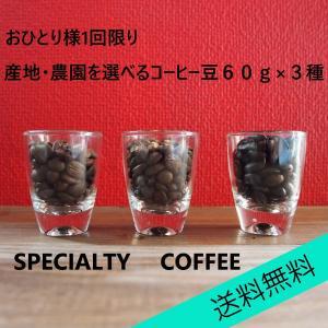 送料無料 自家焙煎 スペシャルティコーヒー豆  選べる3種