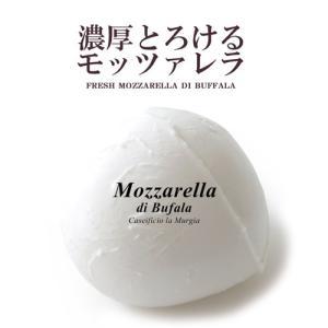 モッツァレラ チーズ ムルジア社 とろける濃厚フレッシュモッツァレラ・ディ・ブッファラ 水牛モッツァ...